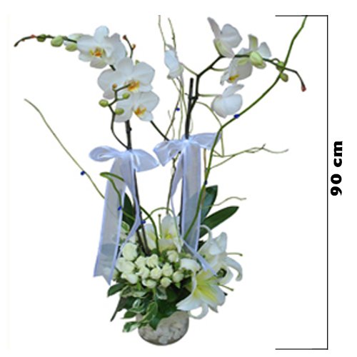 Cam Vazoda İTHAL Orkide Aranjmanı
