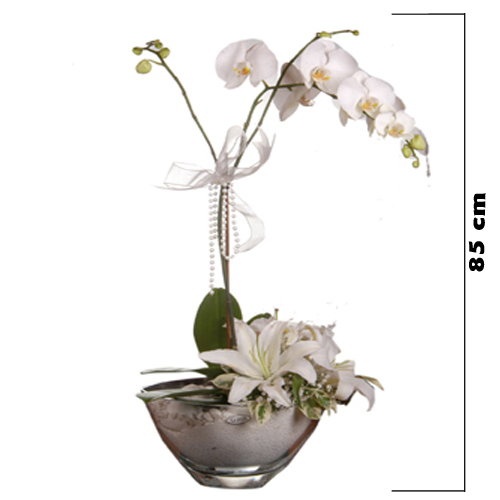 Cam Kasede Orkide Arajmanı